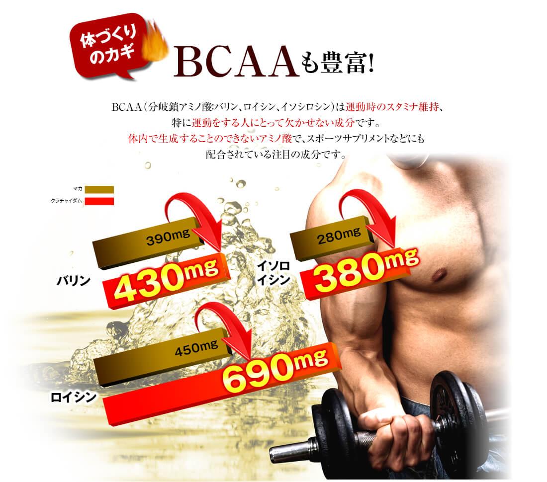 筋肉維持のカギBCAA(バリン・ロイシン・イソロイシン)も豊富