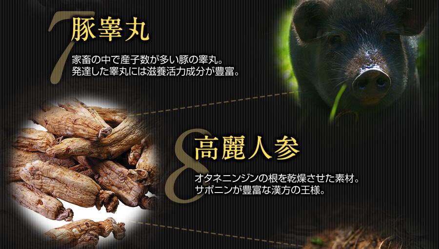 7.豚睾丸 8.高麗人参